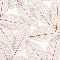 Anta-Leaves-Lumicor